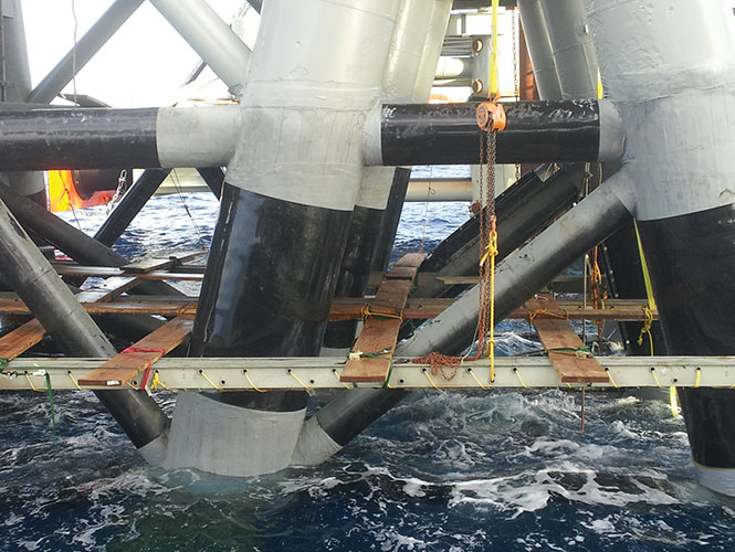 SeaShield 70 system protecting marine piles